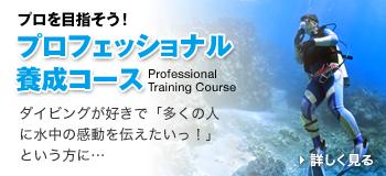 プロフェッショナル養成コース